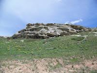 Rock Wren Habitat
