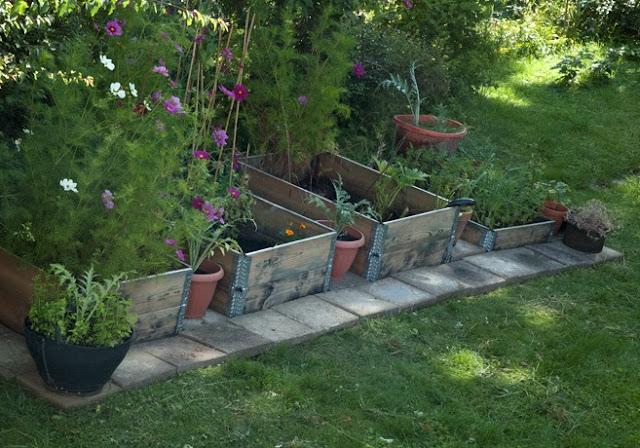 Pallkragar fyllda med växter står på rad. Framför ligger betongplattor.