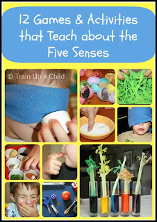 12 Games and Activities to Teach Children about the Five Senses
