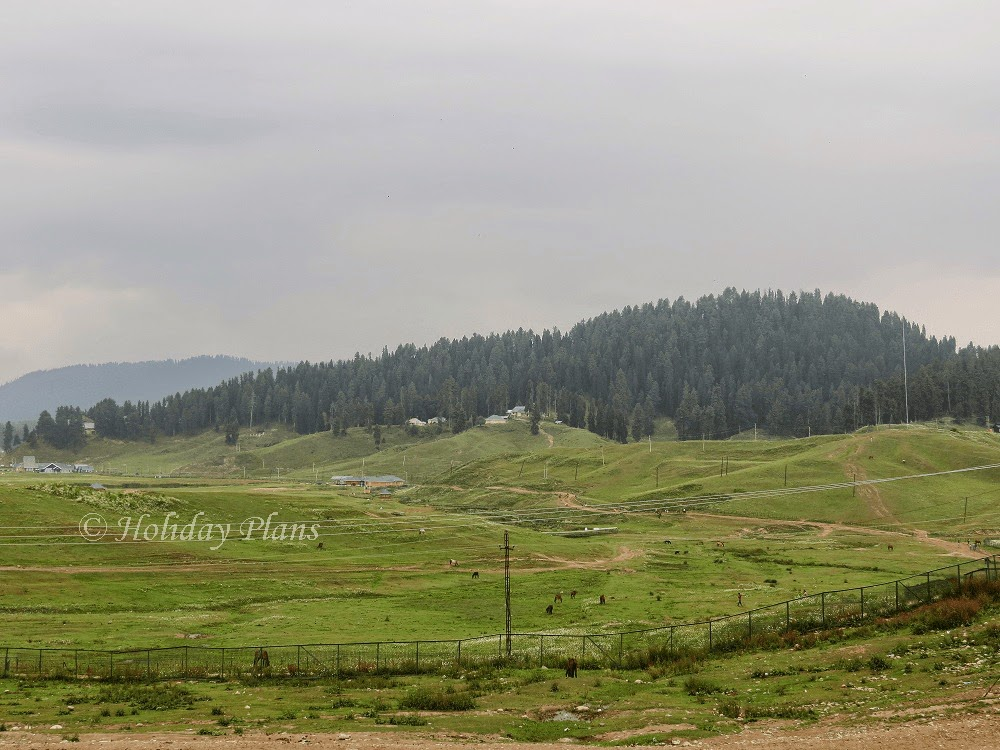 Valley at Gulmarg