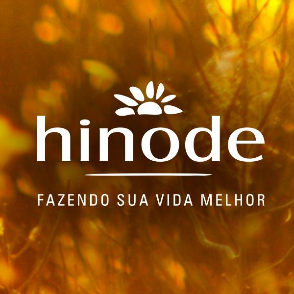 CLIQUE ABAIXO E COMPRE NA MINHA LOJA VIRTUAL HINODE