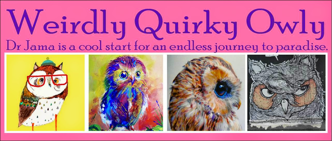 Weirdly Quirky Owly