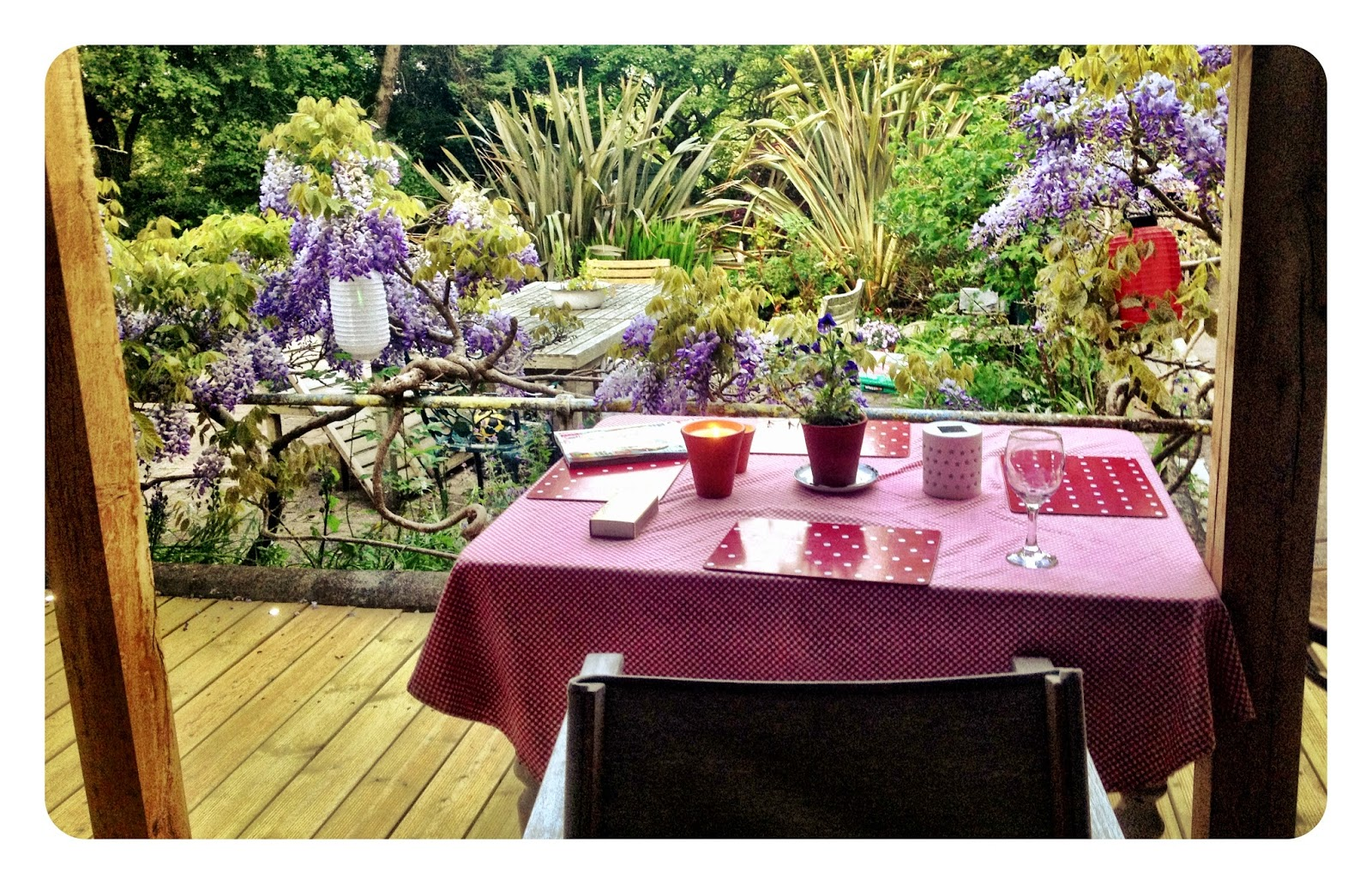 A table on a deck looking out over a garden with wisteria and sub tropical plants