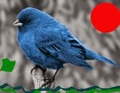 multitudo poesia arte filosofia o passarinho azul 2