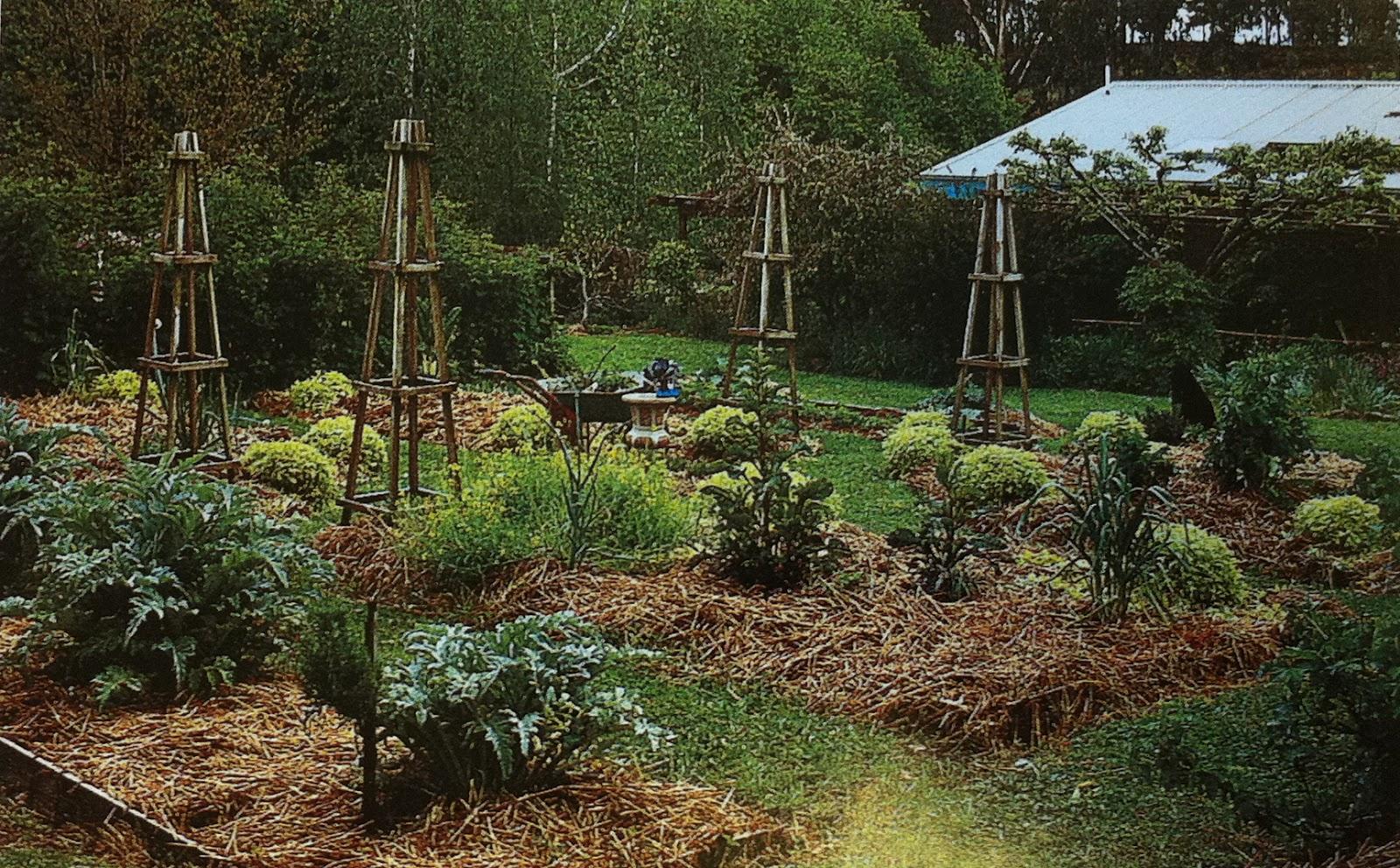ou grama do seu jardim Veja abaixo o que você precisa e como fazer