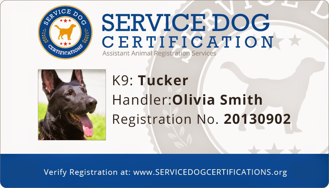 How To Get My Dog Certified As A Service Dog F F 2018