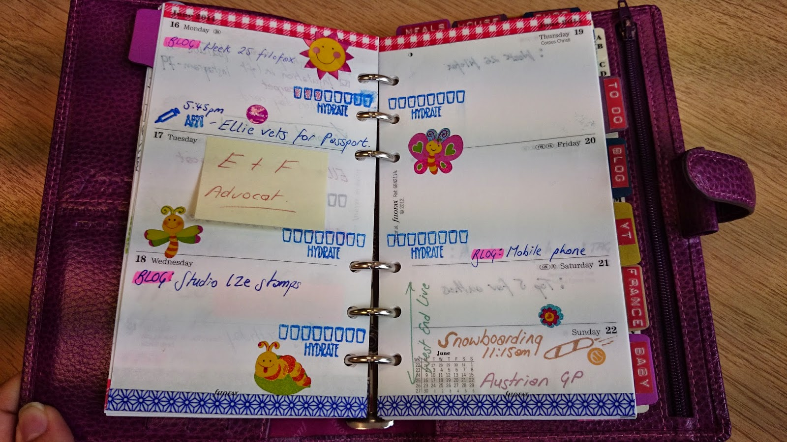 filofax personal finsbury raspberry decorated pages week 25 washi tape studio l2e stamps plan it list it hydration chart