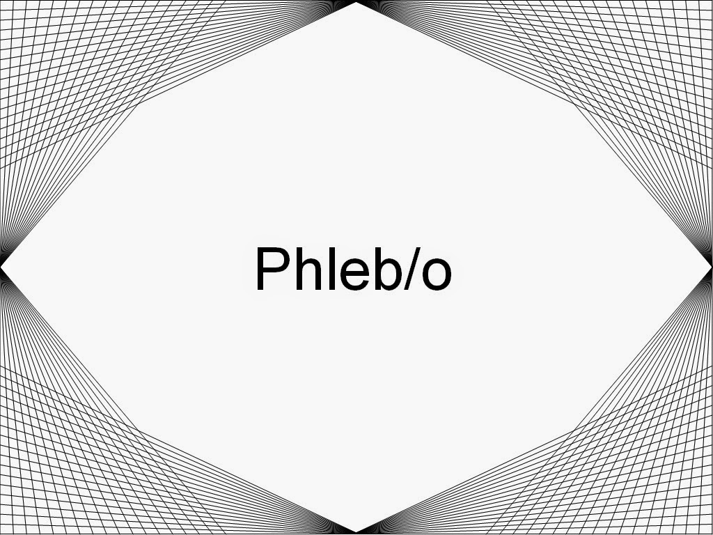 Definition of phleb