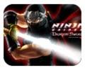 Huyền thoại 1 Ninja