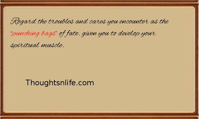 "Thoughtsnlife: Regard the troubles and cares you encounter as the ""punching bags"""