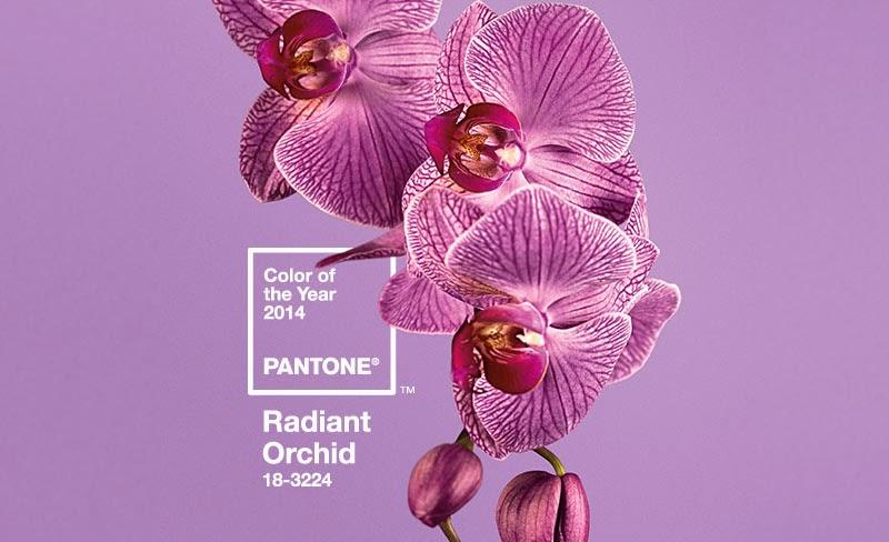 RADIANT ORCHID - SẮC LAN TÍM - MÀU SẮC CỦA NĂM 2014