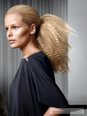 peinados 2015 frizz coletas
