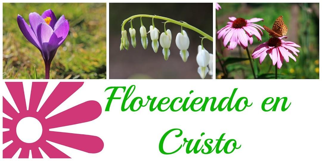 Floreciendo en Cristo