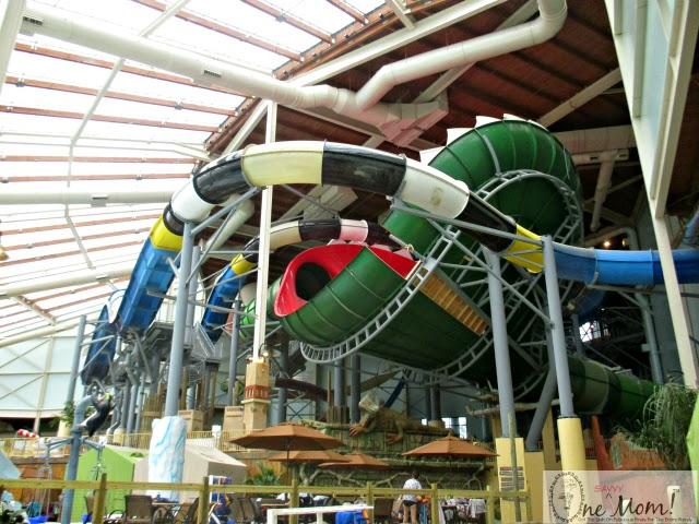 Inside Look New Camelback Lodge Aquatopia Indoor Waterpark Venus Slyde Trap Water Coaster