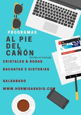 PROGRAMACIÓN HORMIGARADIO.COM