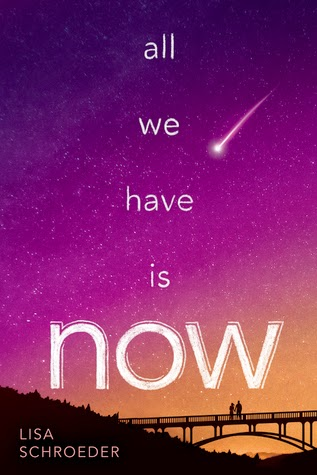 https://www.goodreads.com/book/show/22840148-all-we-have-is-now