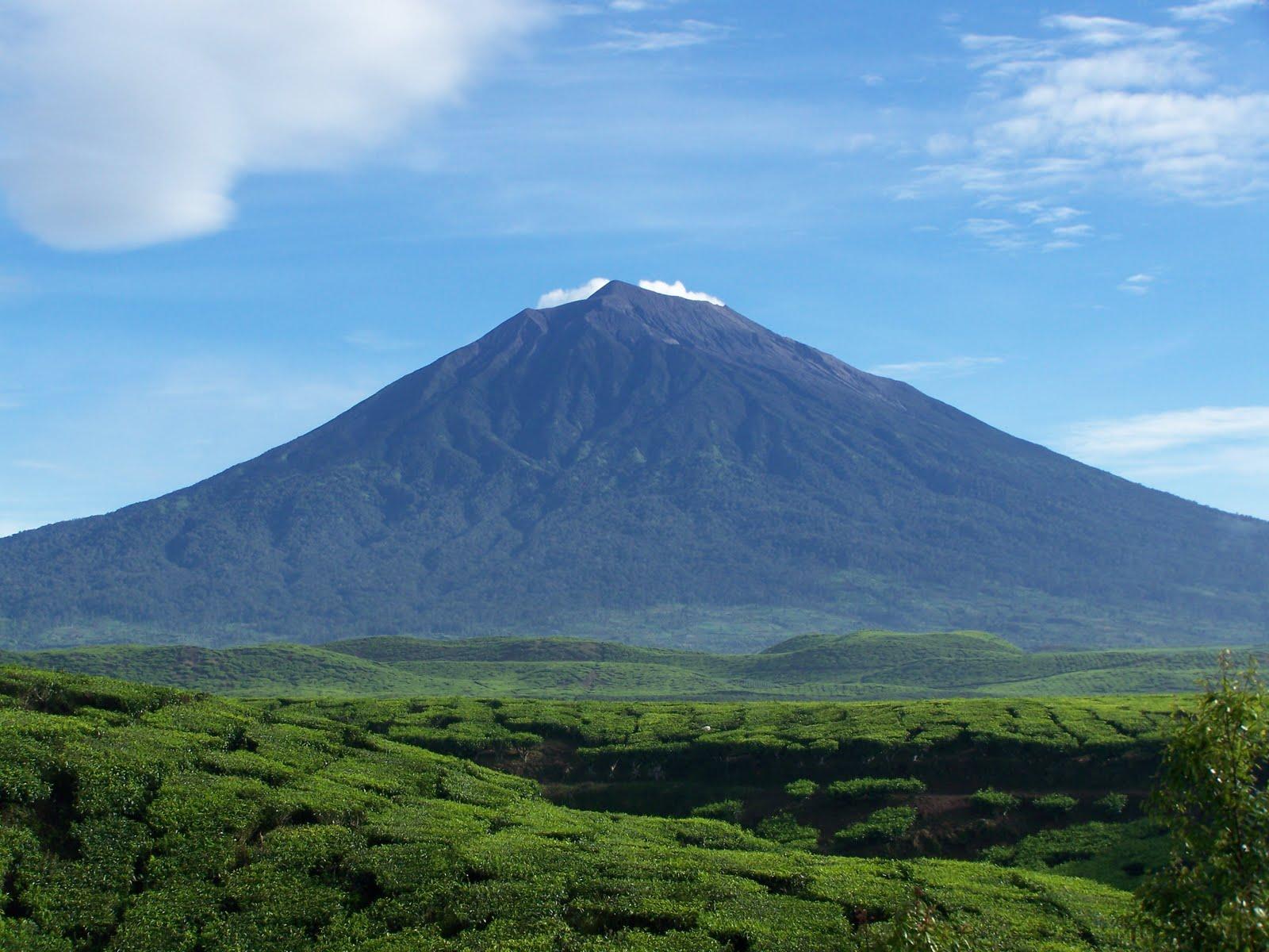 Indonesia Highest Mountain Peak
