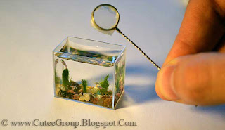 A little fishy: World's smallest aquarium creates a (tiny) splash