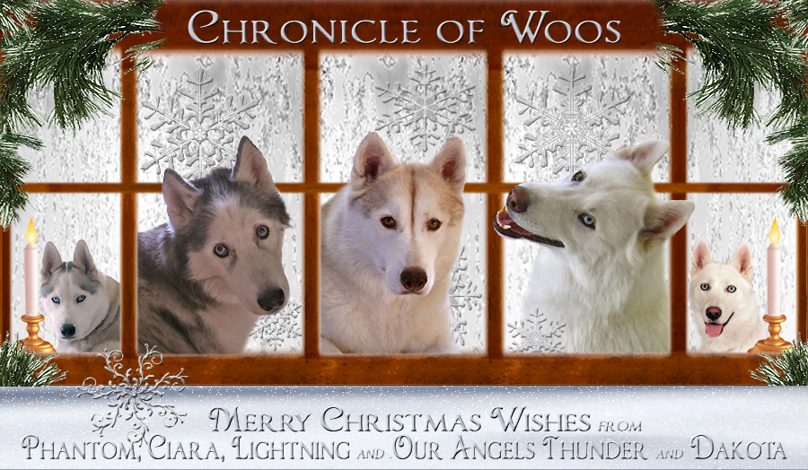 The Chronicle of Woos