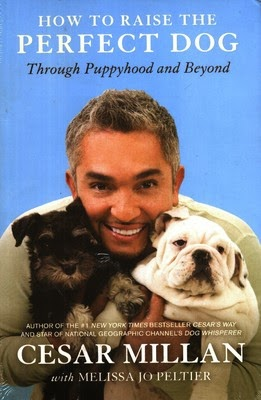 cesar millan - how to train your dog citizen reviews