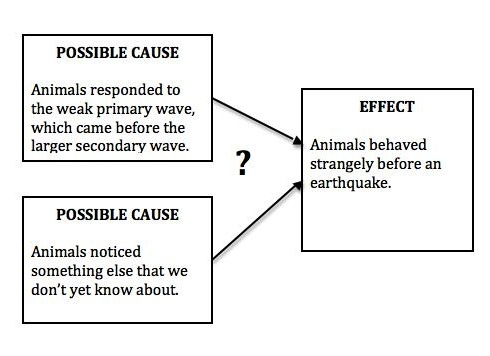 Cause effect essay structure