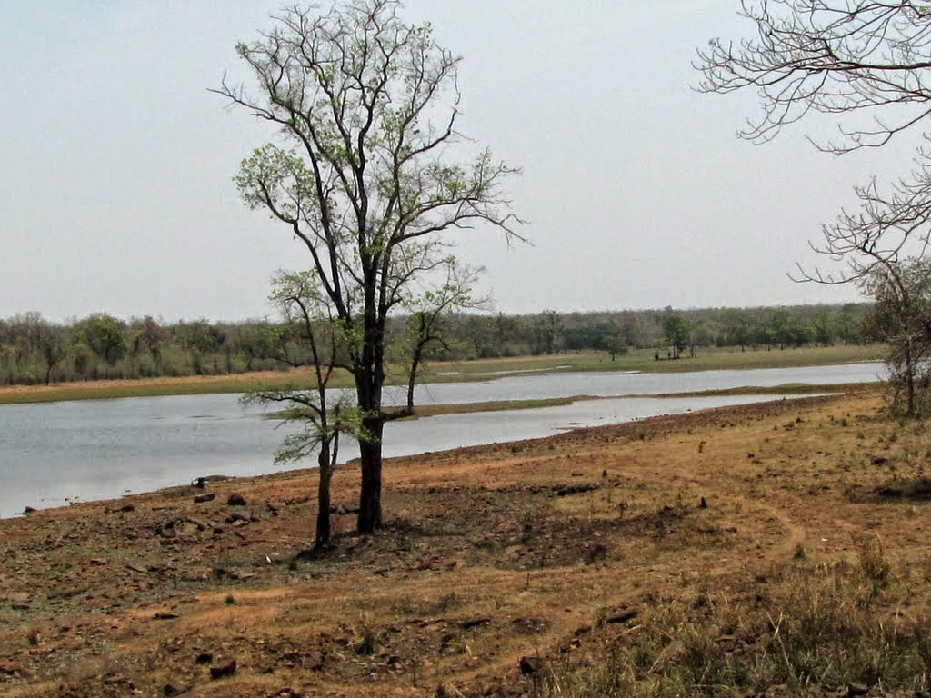 http://www.united21tigercamptadoba.com/places-of-interest.aspx