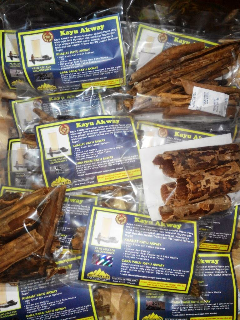 kayu akway obat kuat pria khas papua sarang semut sarang