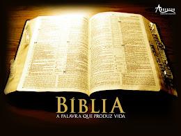 Accede a la Biblia