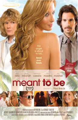 Watch Meant to Be 2010 BRRip Hollywood Movie Online | Meant to Be 2010 Hollywood Movie Poster