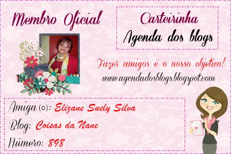 MINHA CARTEIRINHA DA AGENDA