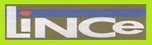 Jornal Lince - Aparecida-SP