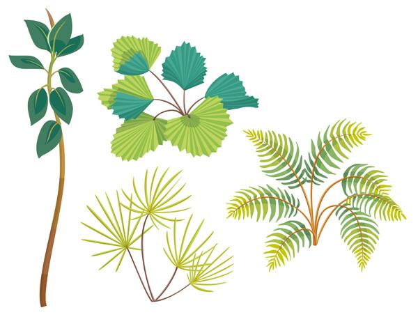 La maison du renard plantes tropicales for Plante jungle