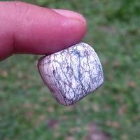 Manfaat-Batu-Mustika-Anti-Racun-Anti-Bisa