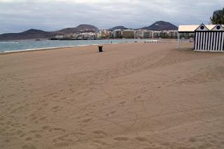 Playa limpia con recipientes para la basura