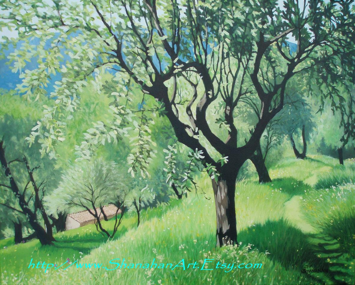 Olive Grove -- For Sale Framed Euro 550
