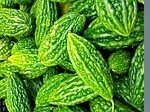Treat Acne with Bittergourd-Karela