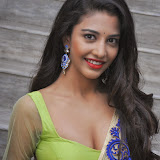 Daksha Nagarkar Hot Photo Gallery in Half Saree at Ak Rao Pk Rao Audio Launch CelebsNext (29)