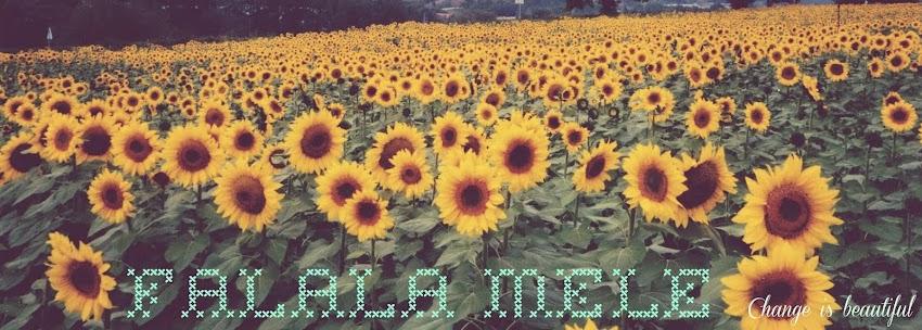 Falala Mele