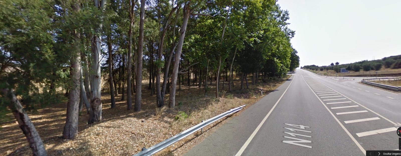 Estrada N 114
