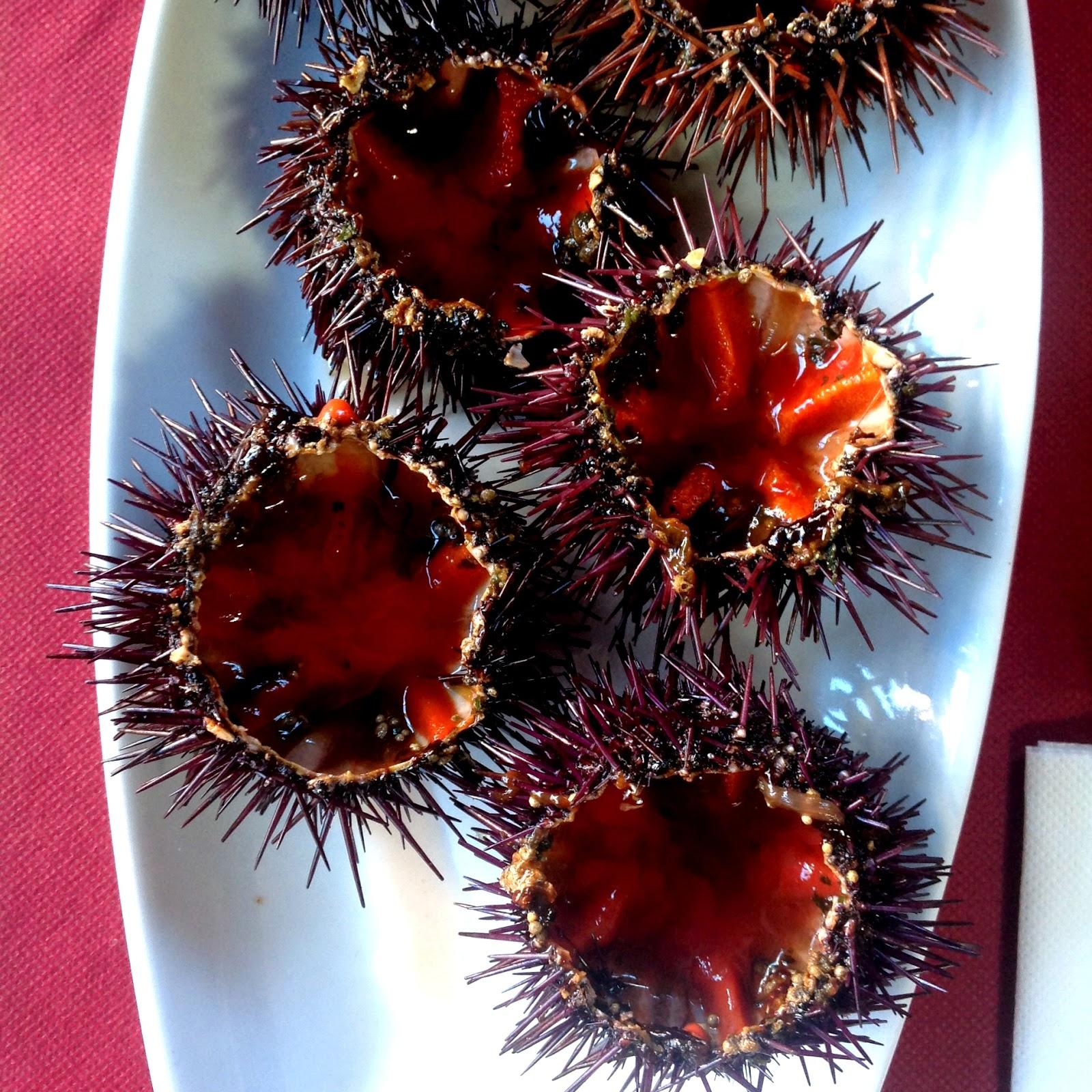 Erizos de mar de Dénia de intenso sabor yodado