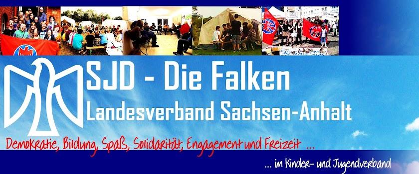 Falken Sachsen-Anhalt