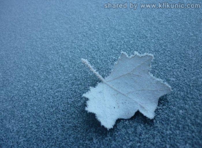 http://4.bp.blogspot.com/-2G4dqcWMVkA/TX1kgXGjGjI/AAAAAAAARHg/d4TMFdyAeRo/s1600/winter_56.jpg