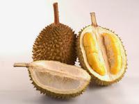 Motivasi Dari Karakteristik Durian