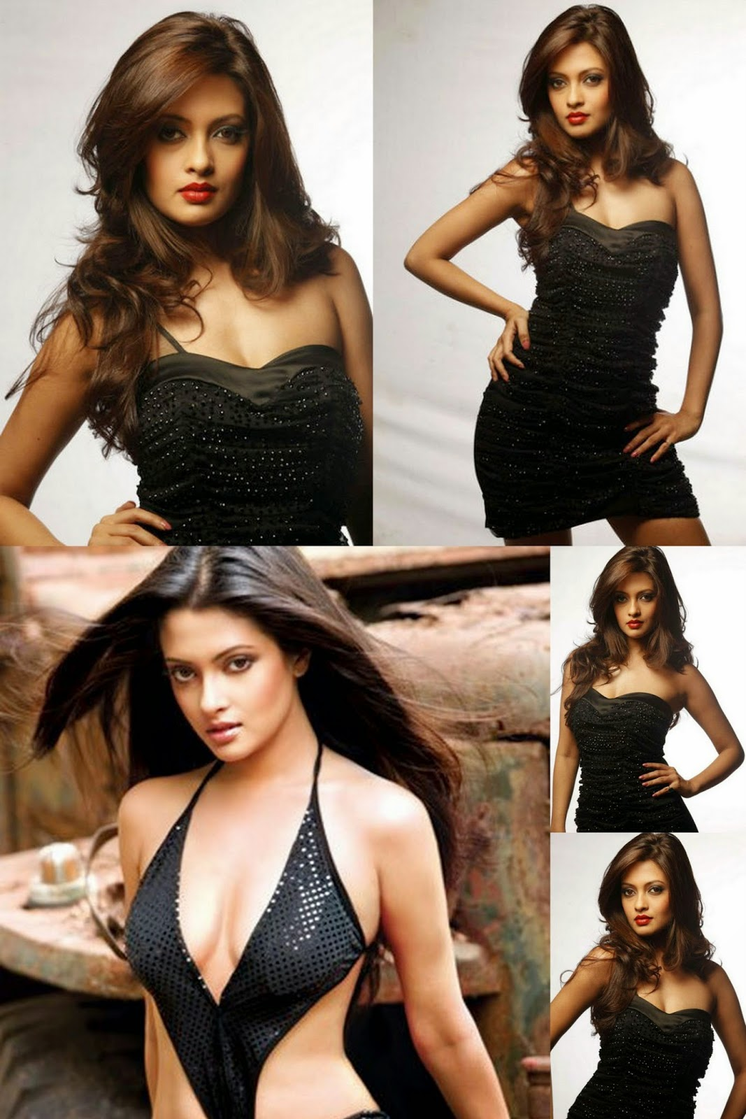 Riya Sen Latest Hot Photoshoot (1707 x 2560)