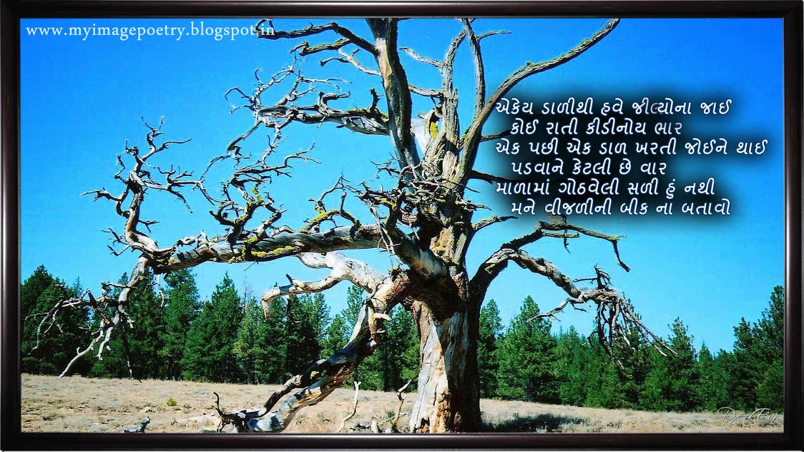gujarati image poetry old tree gujarati image poetry bindass bird