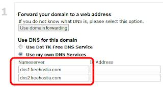 Вводим адреса собственных DNS-серверов на dot.tk