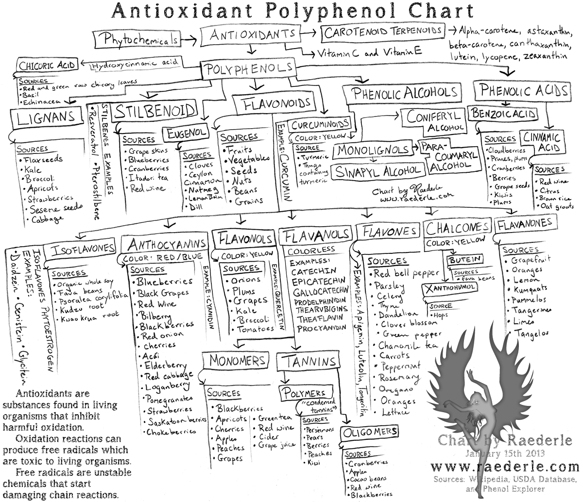 Raederle's Antioxidant Chart at Raederle.com