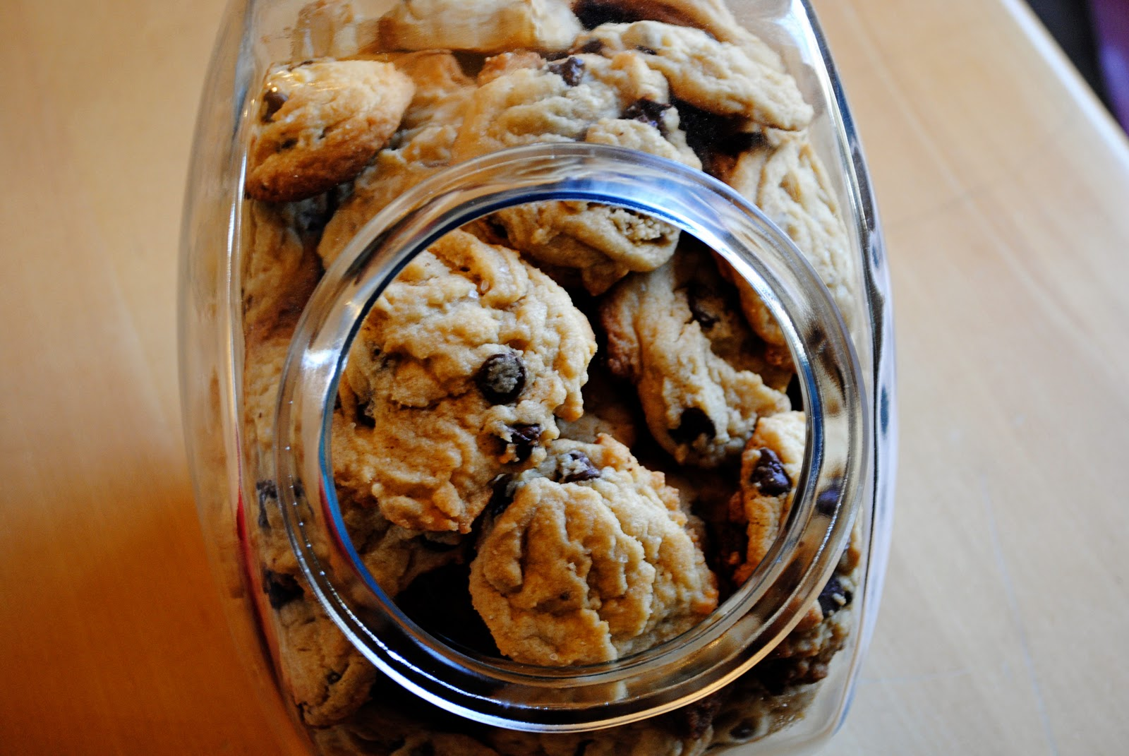Butter and Oven Mitts: Salted Brown Sugar Chocolate Chip Cookies