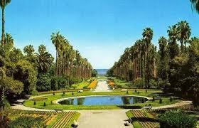 حديقة الحامة بالجزائر