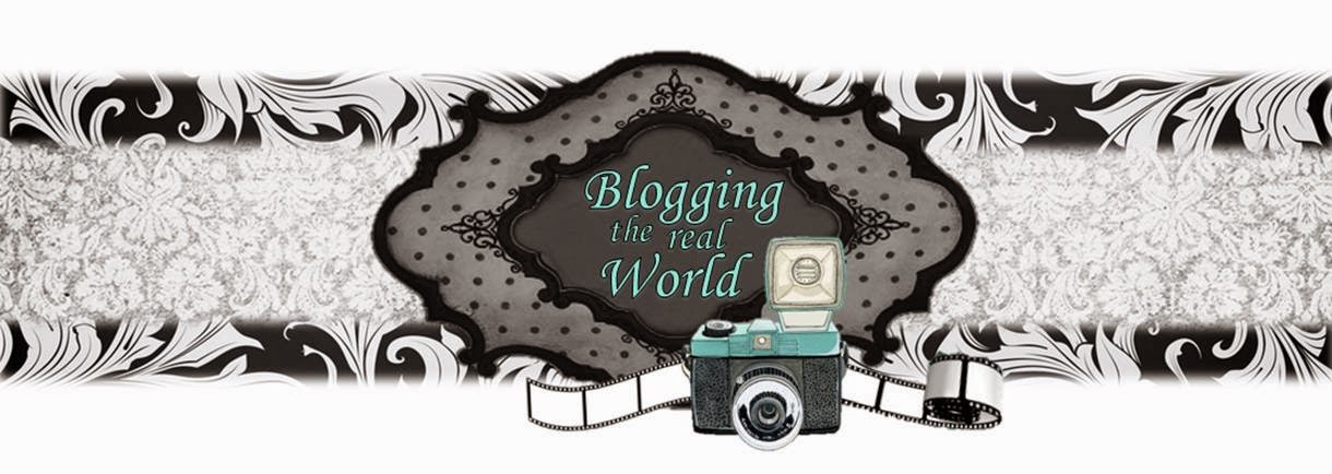 Blogging the real  world